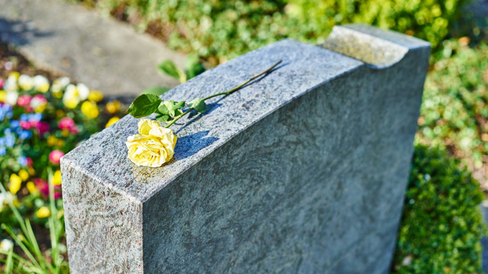 Gravestone With Yellow Rose Stock Photo